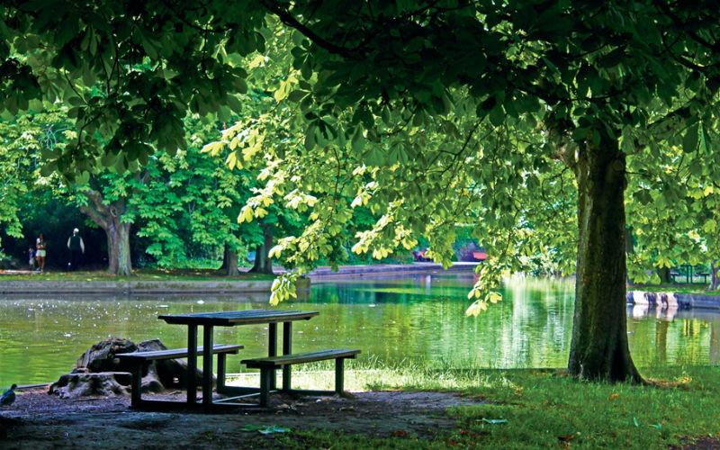Herbert park, Dublin, irlanda, picninc