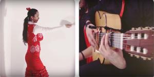 Flamenco en Dublin
